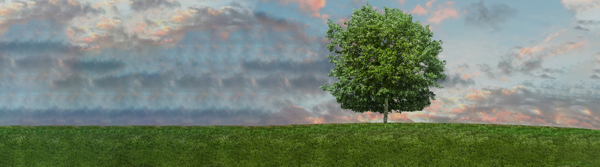 Eco-Friendly-banner-img